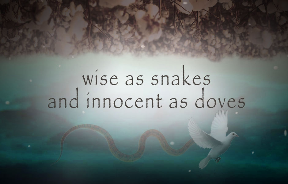 Underground tv show is wise as snakes and innocent as doves