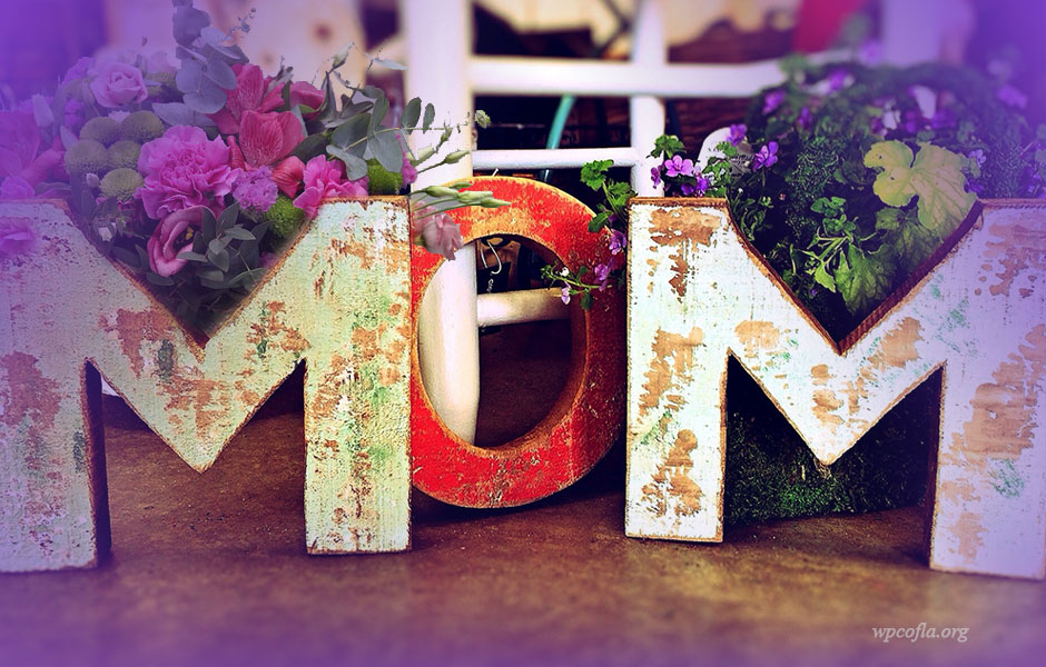 why do we celebrate mothers day Mother's day why did we start celebrating a special day for mothers looking for ideas of what to do on mother's day or some ideas of what the children can make for a mother's day gift.