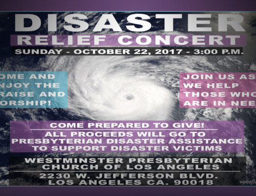 Disaster Relief Concert