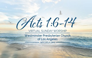 Virtual Online Sermon: Acts 1:6-14 by Guest Preacher Anja Williams